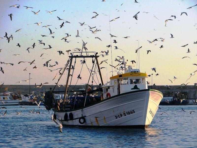 fisher boat arriving